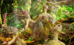Singing Wood Nymphs (four)
