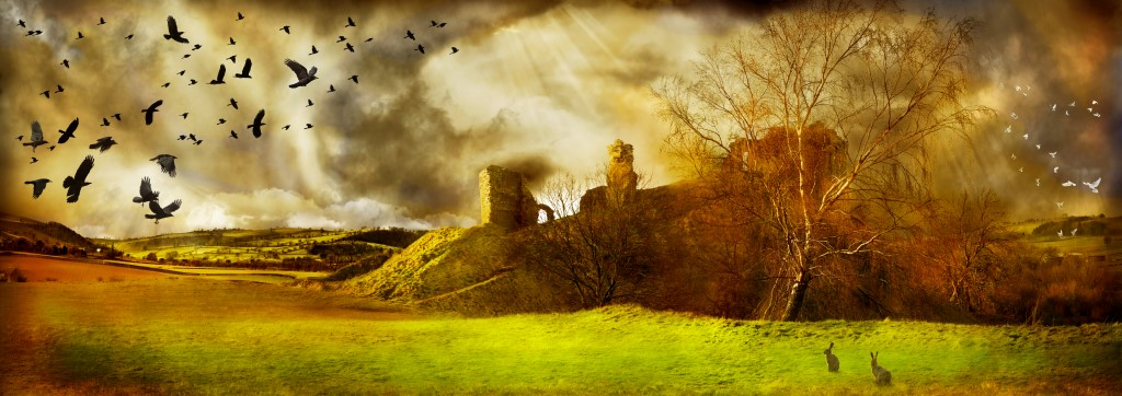 Clun Castle and a red kite