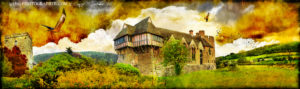 Stokesay Castle & a pair of red kites