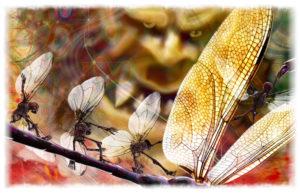 Stiperstones with giant and skeleton fairies - white border